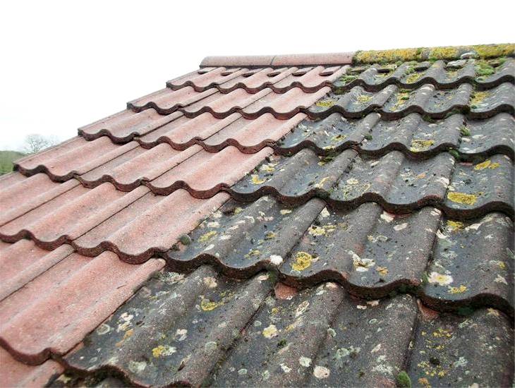 how to clean tile roof with bleach